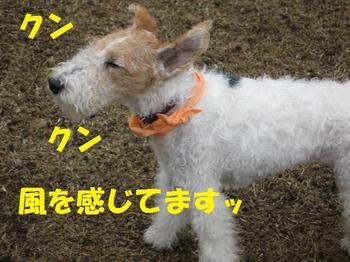 Hideki_025